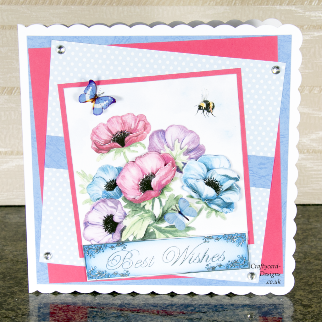 Anemone and Honey Bee Card
