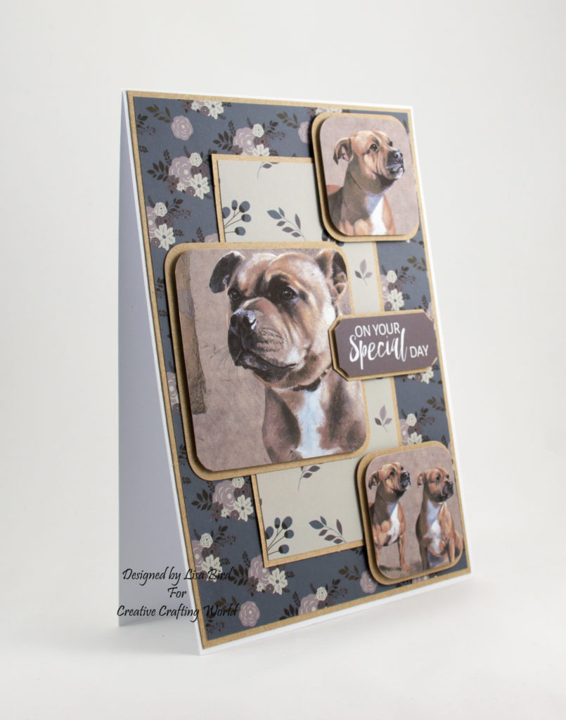 Staffordshire Bull Terrier images on a handmade card