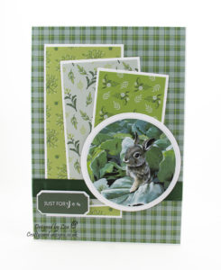 Today's handmade card has been created using the new dvd-rom from Creative Crafting World called British Wildlife Volume III. With images from Pollyanna Pickering. This will be showing on Create and Craft on the 27th January 2019. I have used the rabbit collection for this card.