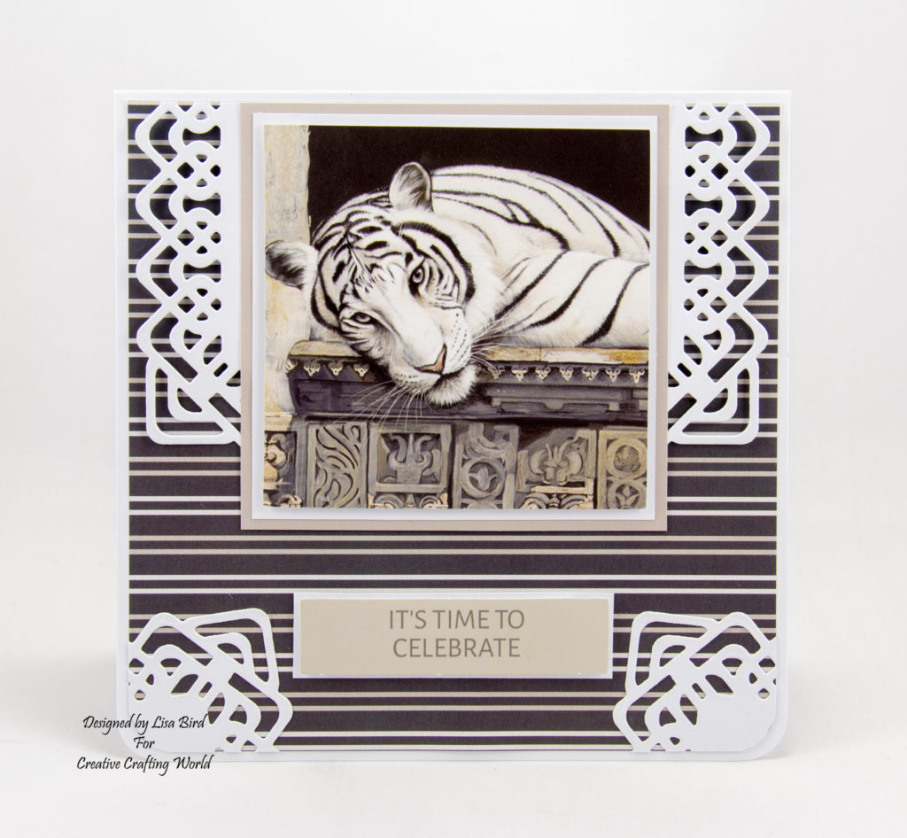 "These 6"" by 6"" handmade cards have been created using the new paper collection from Creative Crafting World called World Wildlife Volume III. With art work by Pollyanna Pickering."