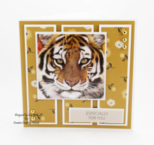 """These 6"""" by 6"""" handmade cards have been created using the new paper collection fromCreative Crafting Worldcalled World Wildlife Volume III. With art work by Pollyanna Pickering."""