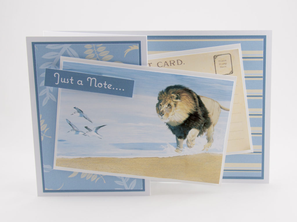 handmade card has been created using the Wildlife Adventure dvd-rom from Creative Crafting World. Images by Pollyanna Pickering