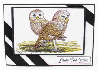 handmade card has been created using a digi image design from Craftsuprint called Digi Stamp Owls 3