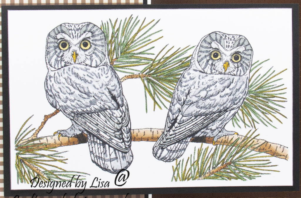 handmade card has been created using a digi image design from Craftsuprint called Digi Stamp Owls 3 .