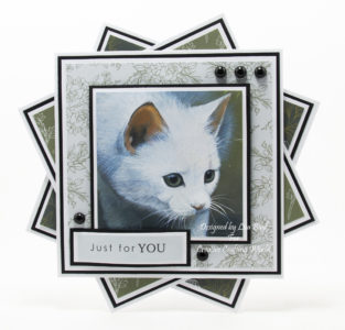 handmade card created using a dvd-rom called Majestic Cats volume II